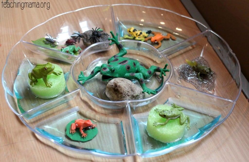 frog sensory play