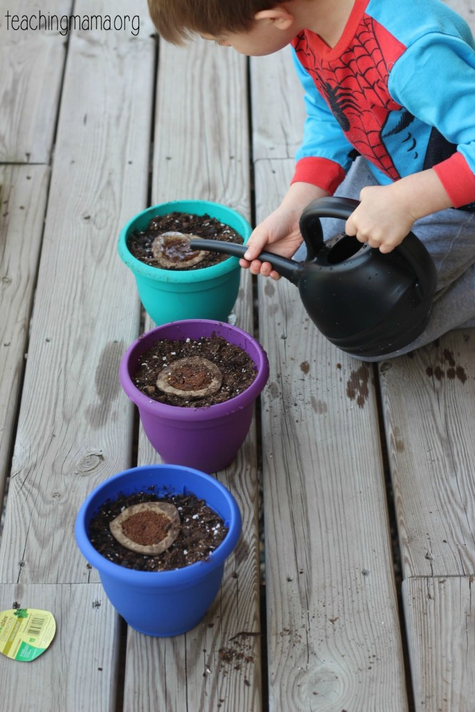 watering seed pods