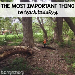 Most Important Thing to Teach Toddlers