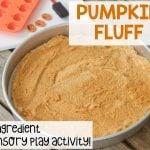 Pumpkin Fluff Sensory Activity