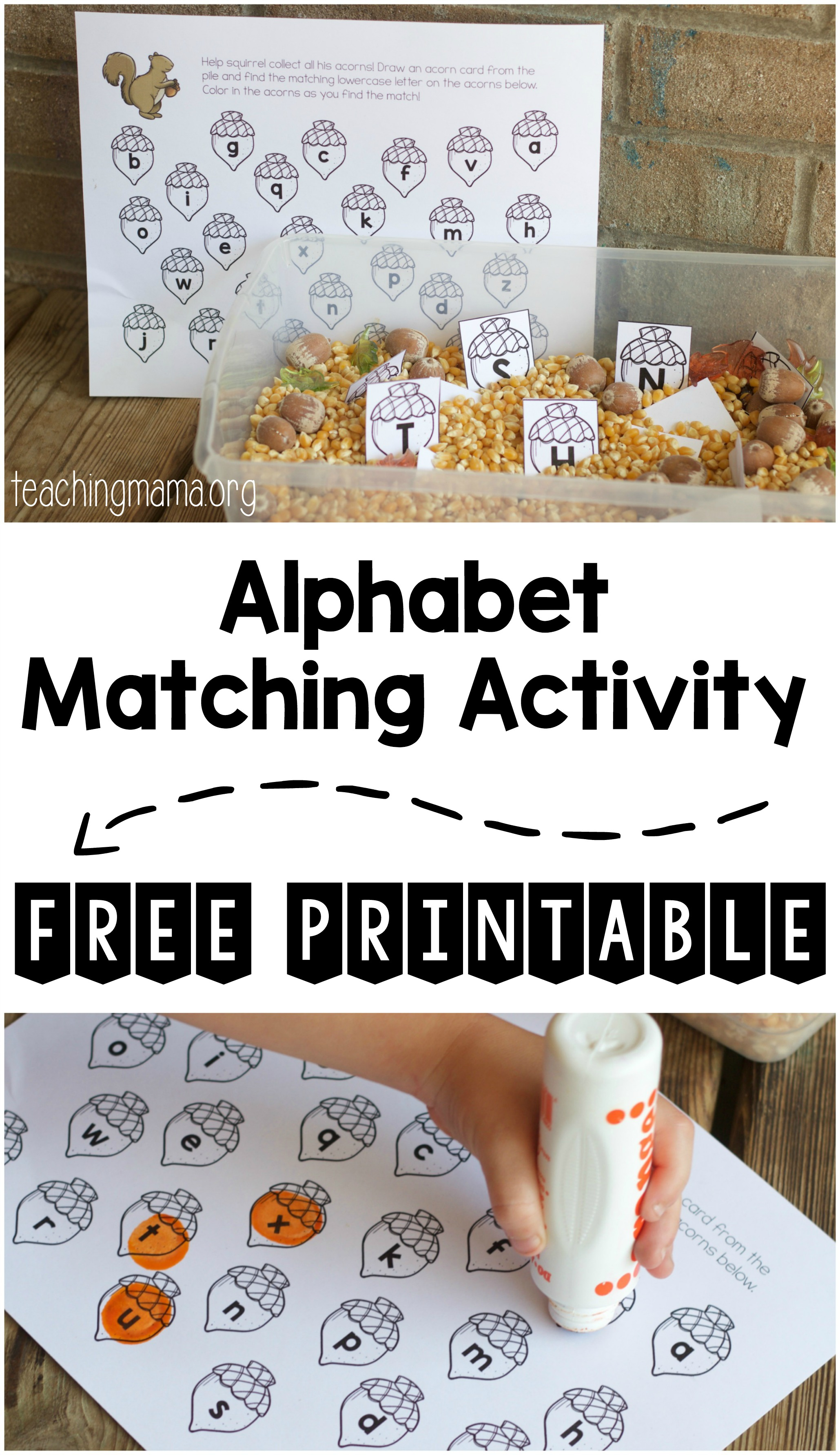 alphabet matching activity pin