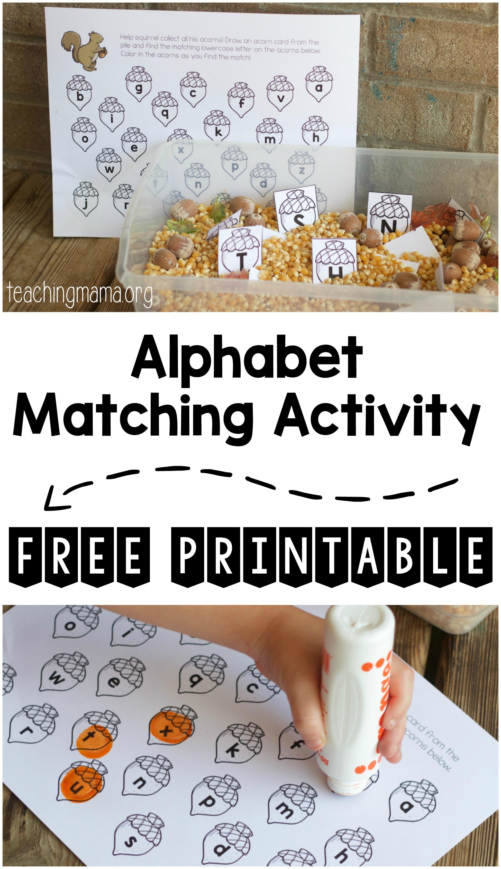 alphabet matching activity pin