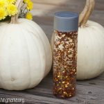 Fall Sensory Bottle