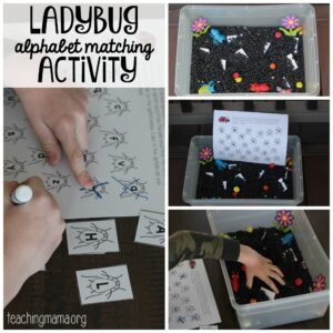 ladybug sensory bin