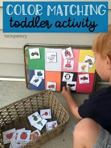 Color Matching Toddler Activity