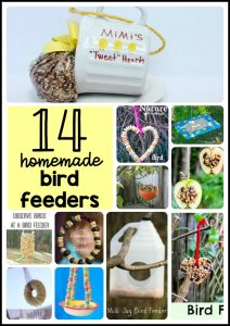 14 homemade bird feeders