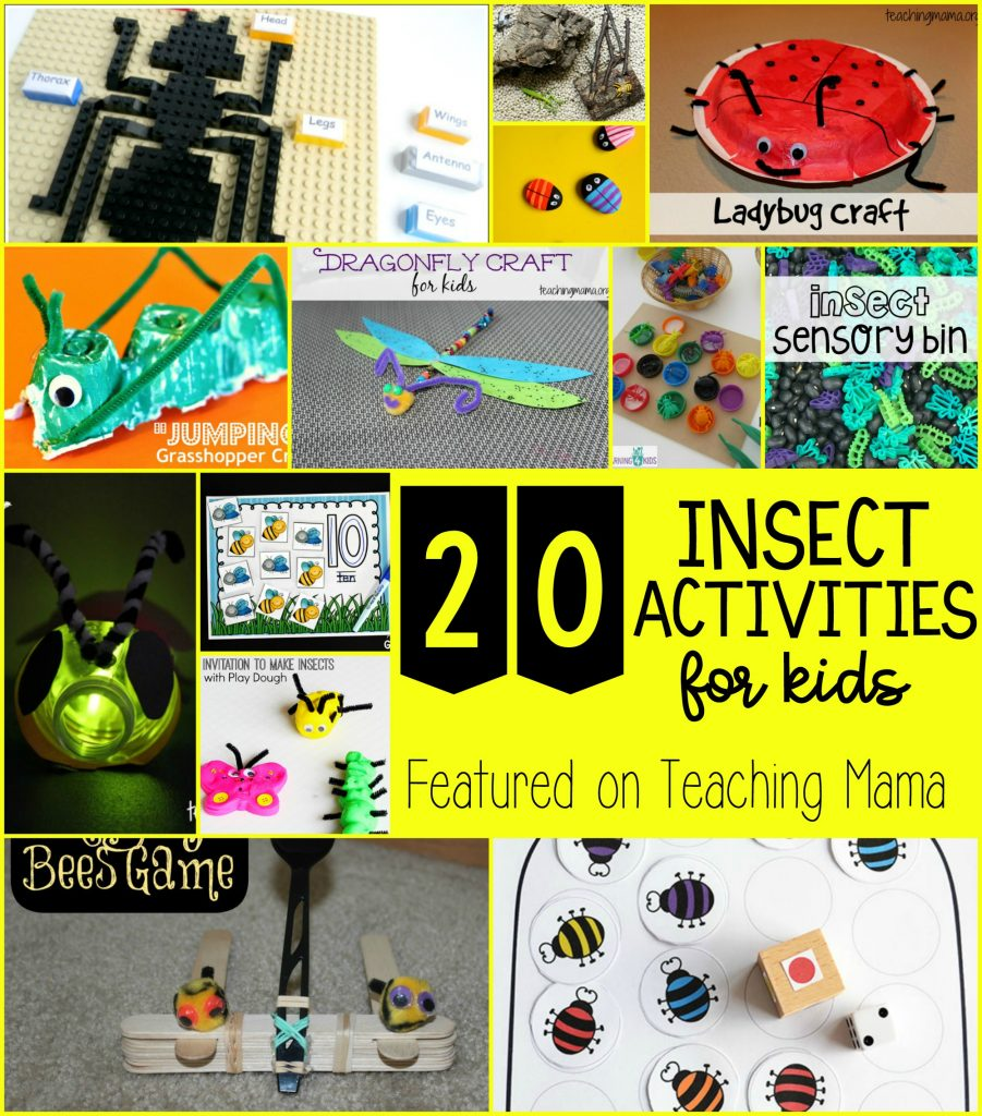 20 Insect Activities for Kids