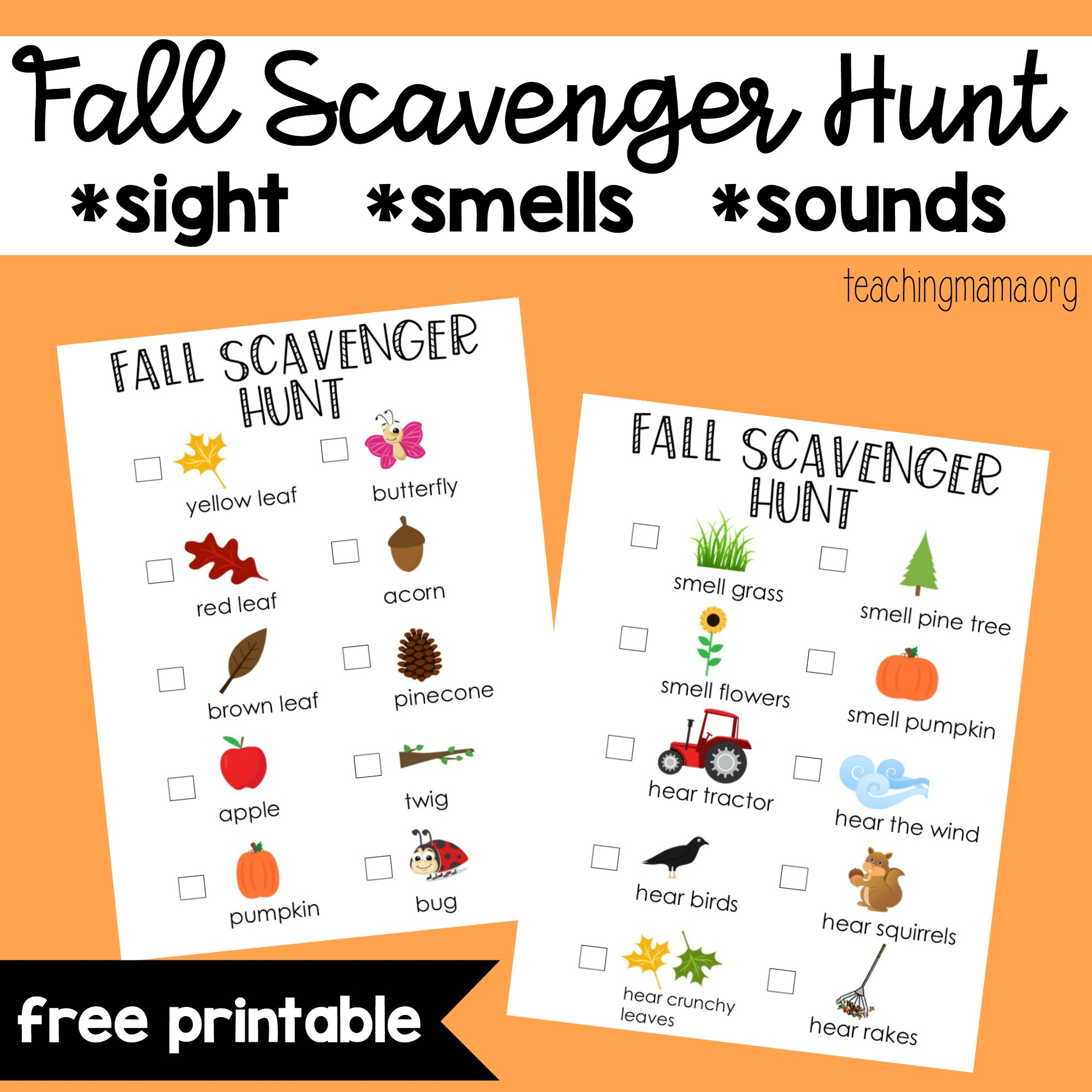 image about Fall Scavenger Hunt Printable named Drop Scavenger Hunt
