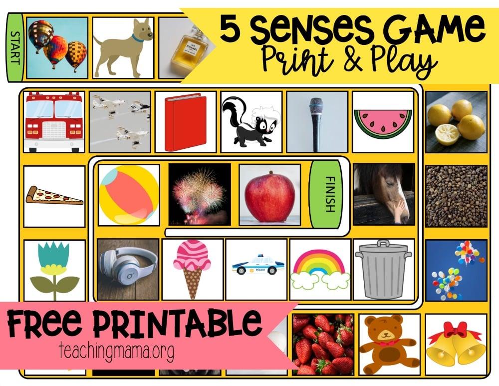 5 Senses Game