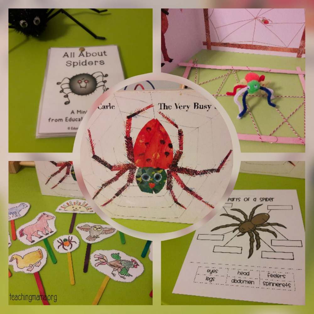 the very busy spider activities
