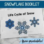 Life Cycle of Snowflakes Booklet