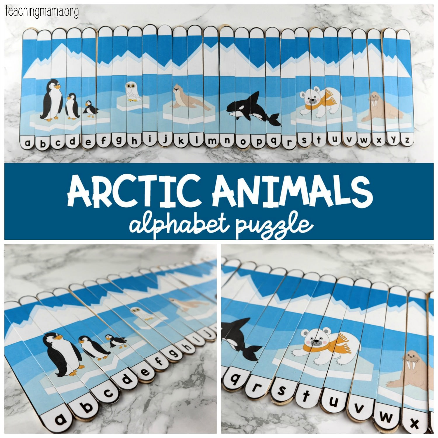 arctic animals alphabet puzzle