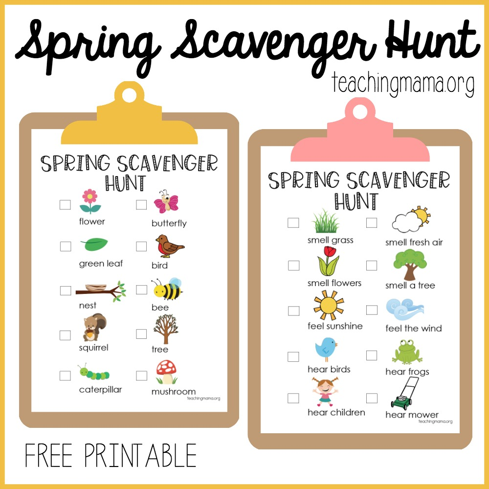 photo relating to Fall Scavenger Hunt Printable known as Spring Scavenger Hunt