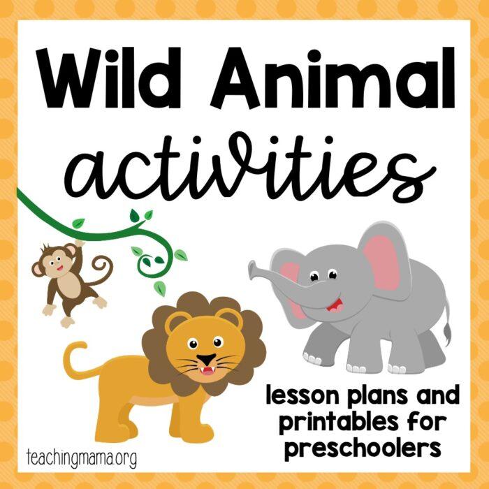 wild animal activities