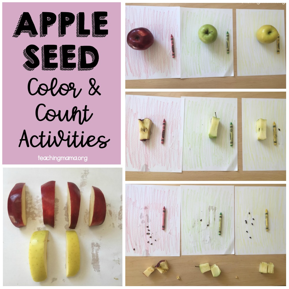 appleseed color & count activities
