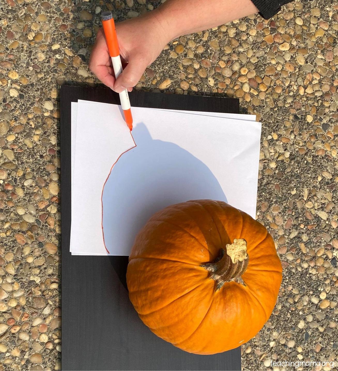 tracing pumpkin shadow preschool activity